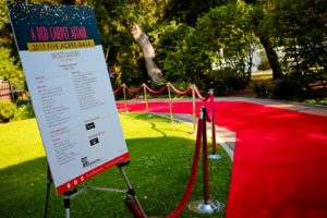 Innovate-Marketing-Group_VIP-Lounge-Ideas_A-Red-Carpet-Affair_innovatemkg.com